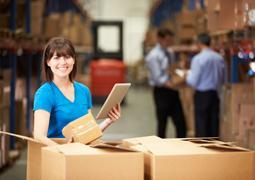 Dip. Logistics Management
